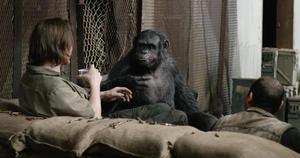 Talking Monkey Movies
